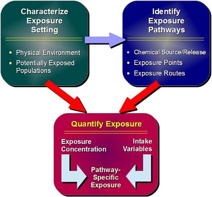 Adapted from U.S. EPA Exposure Factors Handbook