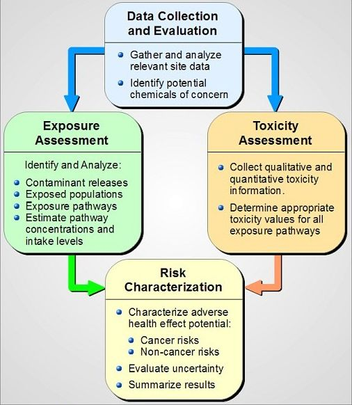 Adapted from U.S. EPA: Risk Assessment Guidance for Superfund